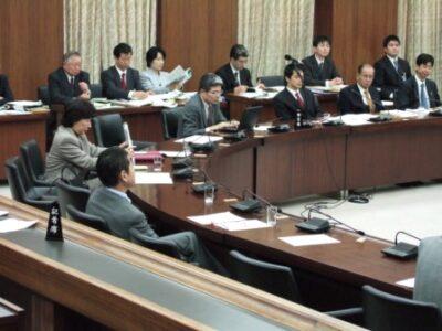 2006年11月30日(木) 憲法調査会に出席