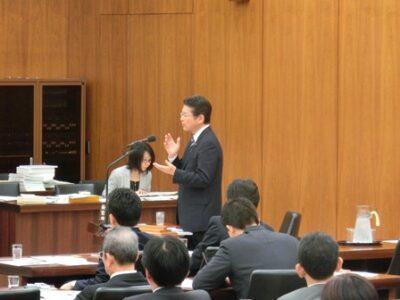 2013年3月19日(火) 厚生労働委員会で質疑に立ちました